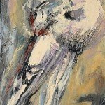 05-darwins-pigeon