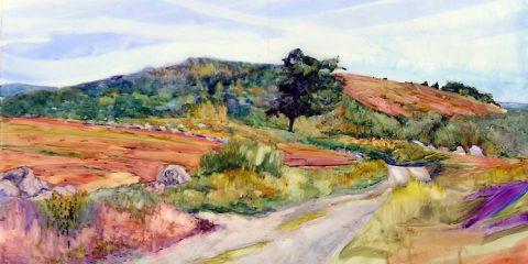 carol-douglas-clary-hill