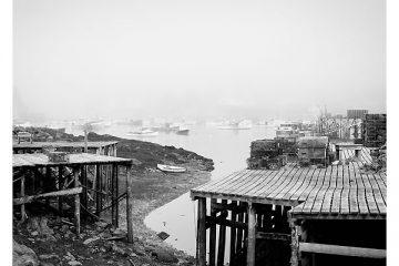 douglas-wood-corea-harbor-fog