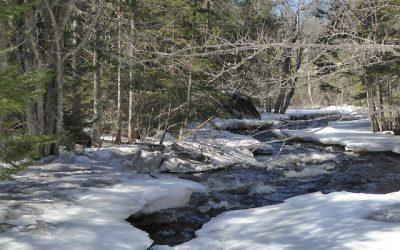 north-star-adventures-duck-trap-river