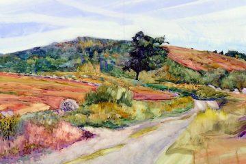 carol-l-douglas-blueberry-barrens