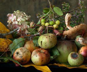 lynn-karlin-autumn-still-life